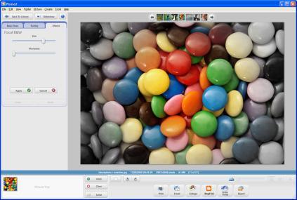 Picasa - Free Image Management Software